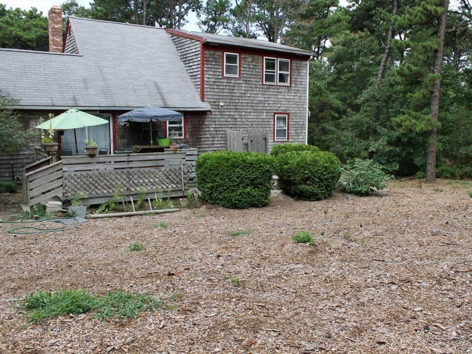 Garden 6 before