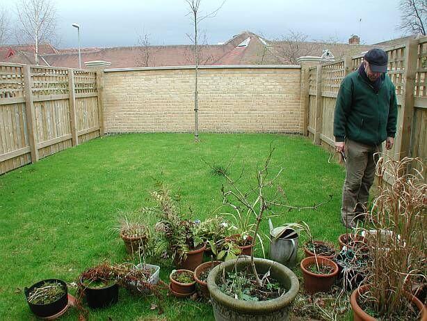 Garden 2 before